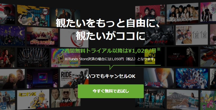 NHK作品が観れるだけじゃない!huluの魅力はこれ