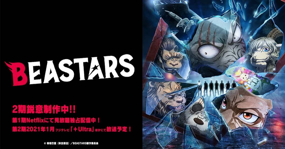 BEASTARS 2期 | 見逃し配信&全話無料で視聴できるサイトまとめ【見放題】