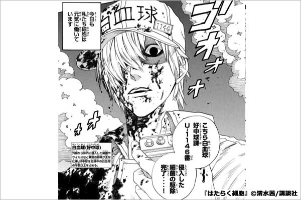 【2位】白血球